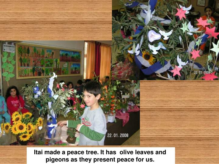 Itai made a peace tree. It has  olive leaves and pigeons as they present peace for us.