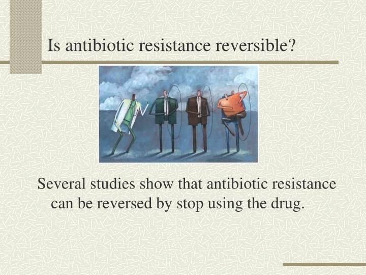 Is antibiotic resistance reversible?