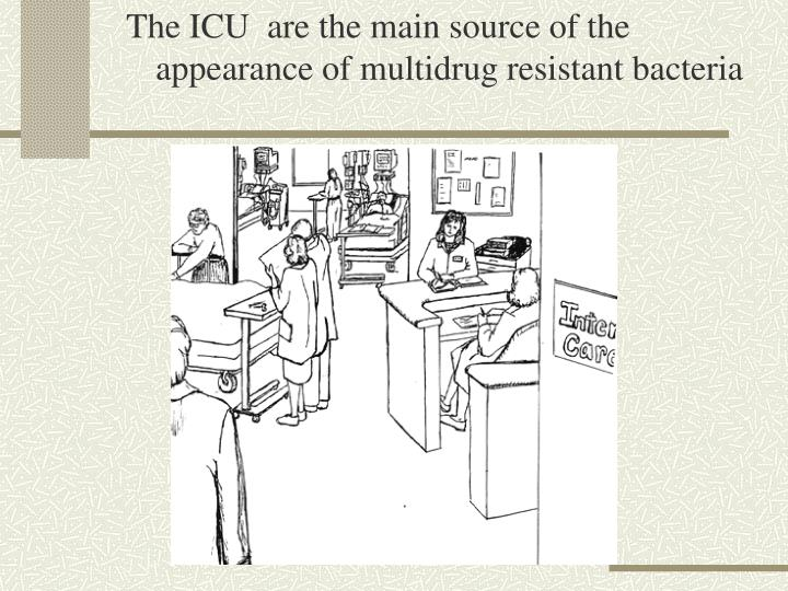 The ICU  are the main source of the appearance of multidrug resistant bacteria