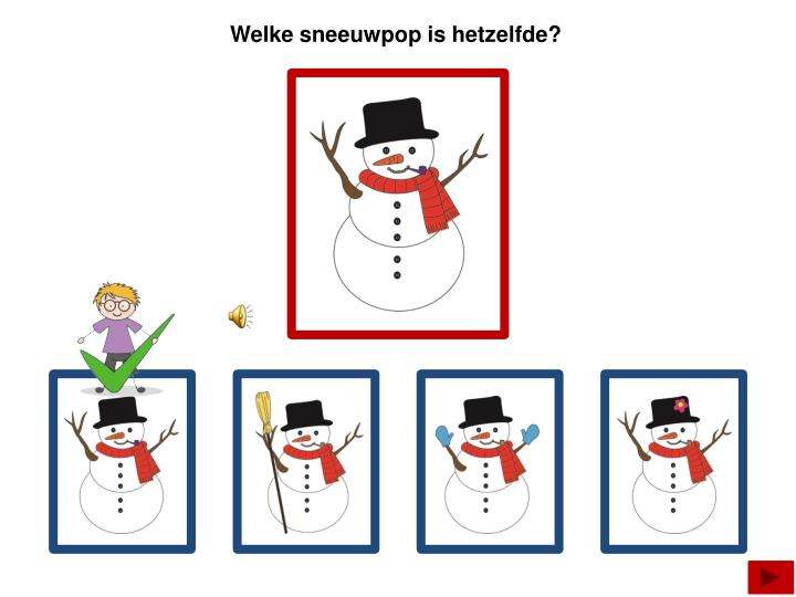 Welke sneeuwpop is hetzelfde?