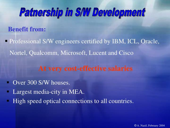 Patnership in S/W Development