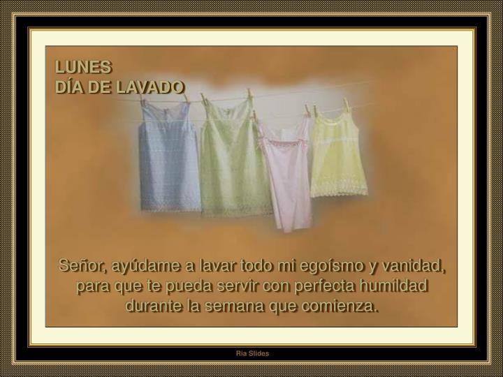 LUNES                                               DÍA DE LAVADO