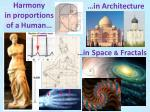 harmony in proportions of a human