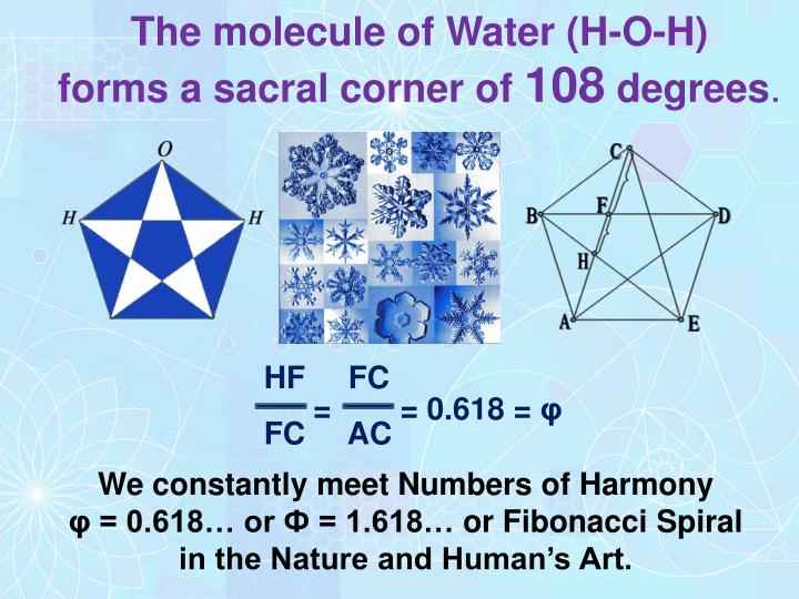 The molecule of Water (H-O-H)