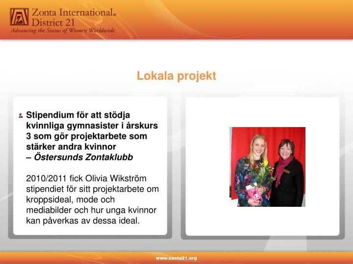 Lokala projekt