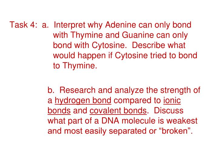 Task 4:  a.  Interpret why Adenine can only bond 		with Thymine and Guanine can only 		bond with Cytosine.  Describe what 		would happen if Cytosine tried to bond 		to Thymine.