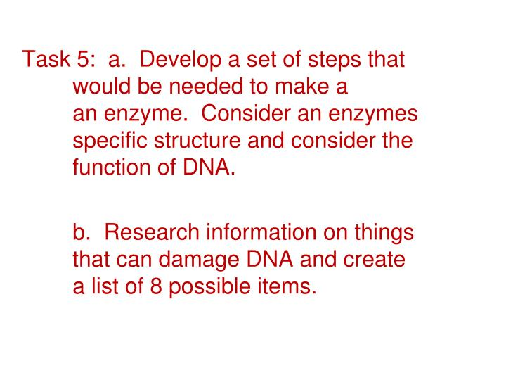 Task 5:  a.  Develop a set of steps that would be needed to make a an enzyme.  Consider an enzymes specific structure and consider the function of DNA.
