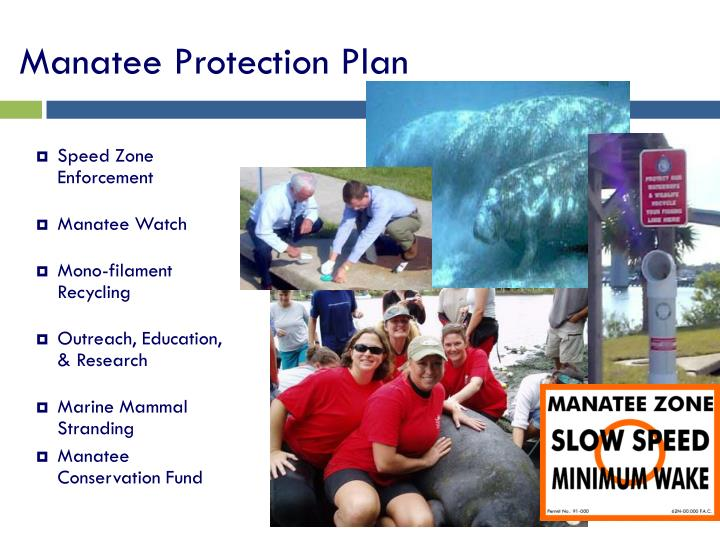 Manatee Protection Plan