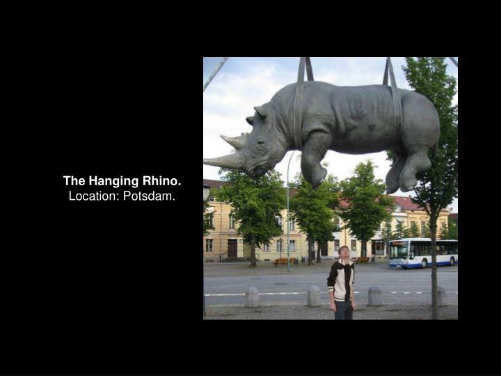 The Hanging Rhino.