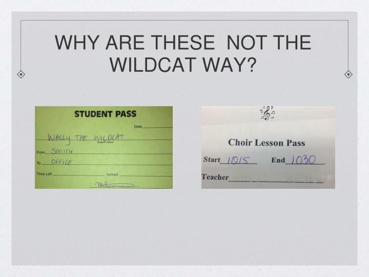 WHY ARE THESE  NOT THE WILDCAT WAY?