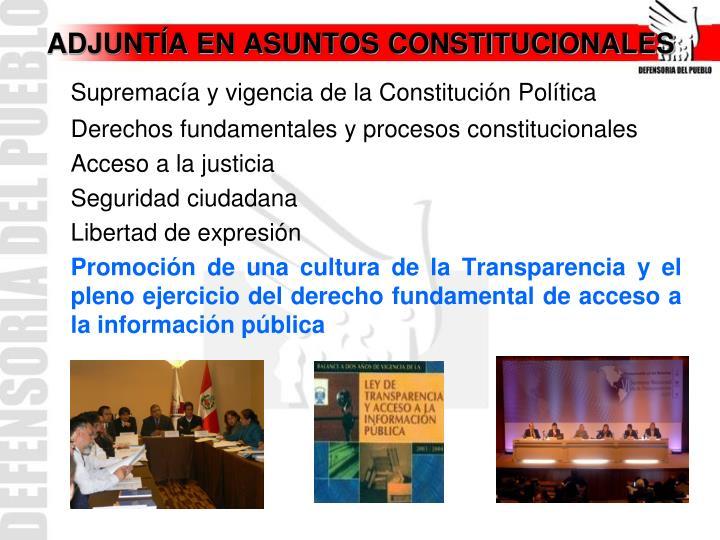 ADJUNTÍA EN ASUNTOS CONSTITUCIONALES