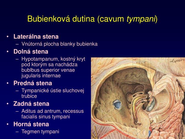Bubienková dutina (cavum