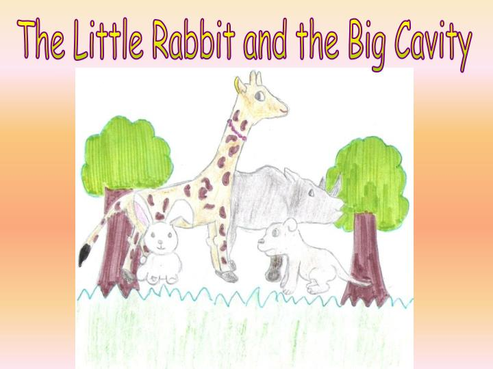The Little Rabbit and the Big Cavity