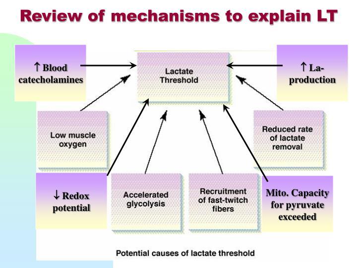 Review of mechanisms to explain LT