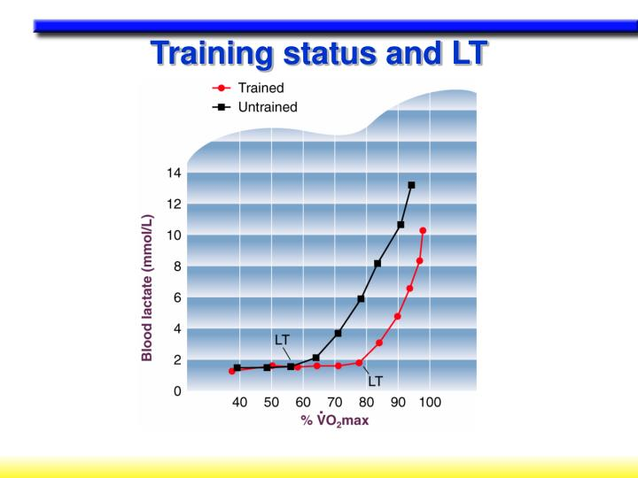 Training status and LT