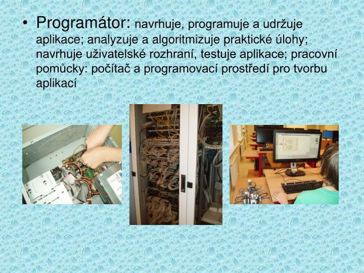 Programátor: