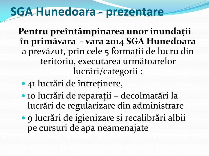 SGA Hunedoara - prezentare