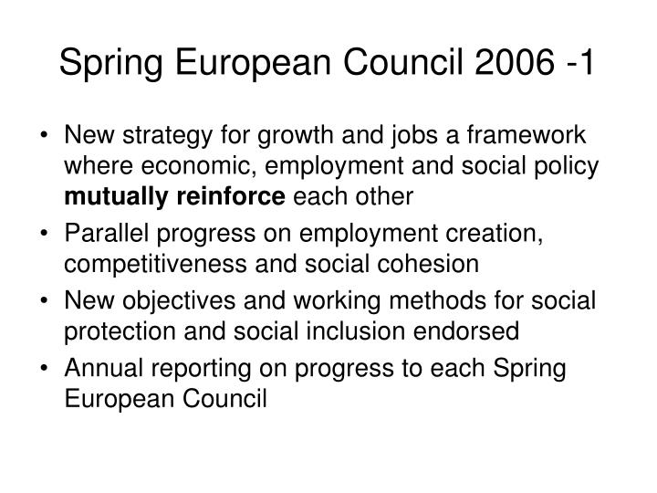 Spring European Council 2006 -1