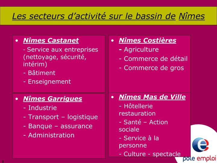 Les secteurs d'activité sur le bassin de