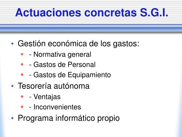 Actuaciones concretas S.G.I.