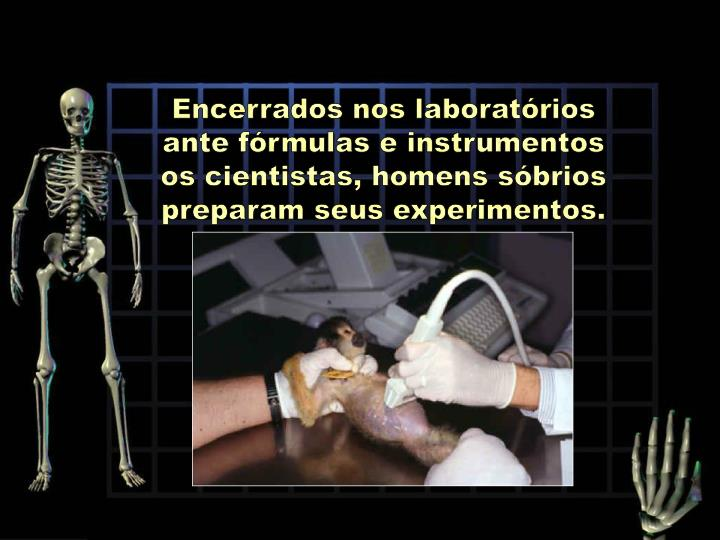 Encerrados nos laboratórios