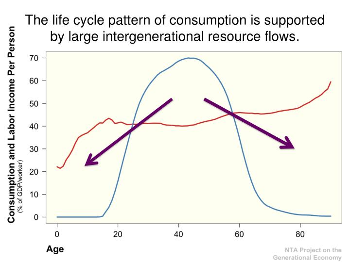 The life cycle pattern of consumption is supported by large intergenerational resource flows