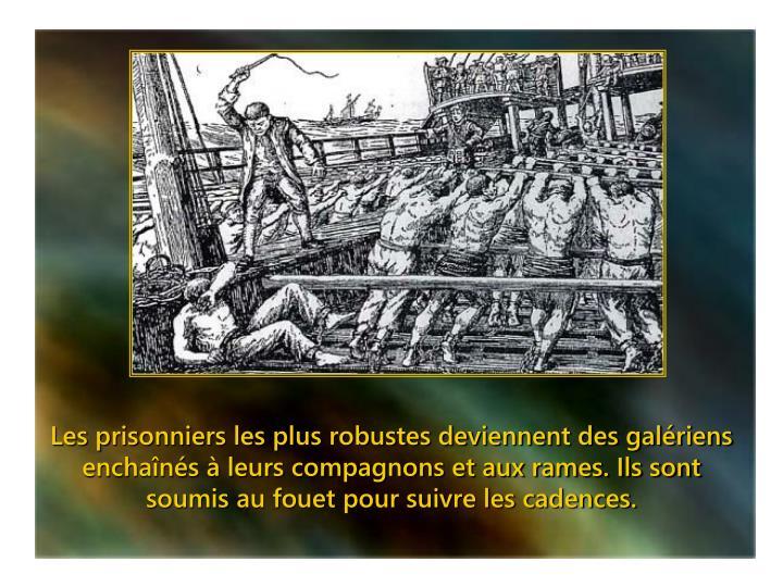 Les prisonniers les plus robustes deviennent des galériens enchaînés à leurs compagnons et aux rames. Ils sont soumis au fouet pour suivre les cadences.