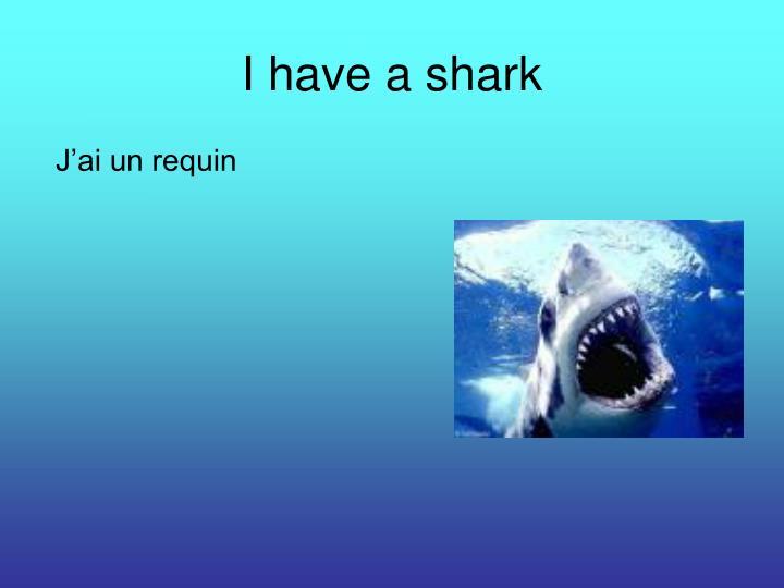 I have a shark
