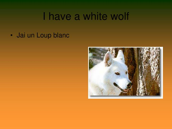 I have a white wolf
