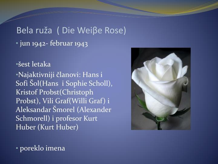 Bela ruža  ( Die Wei
