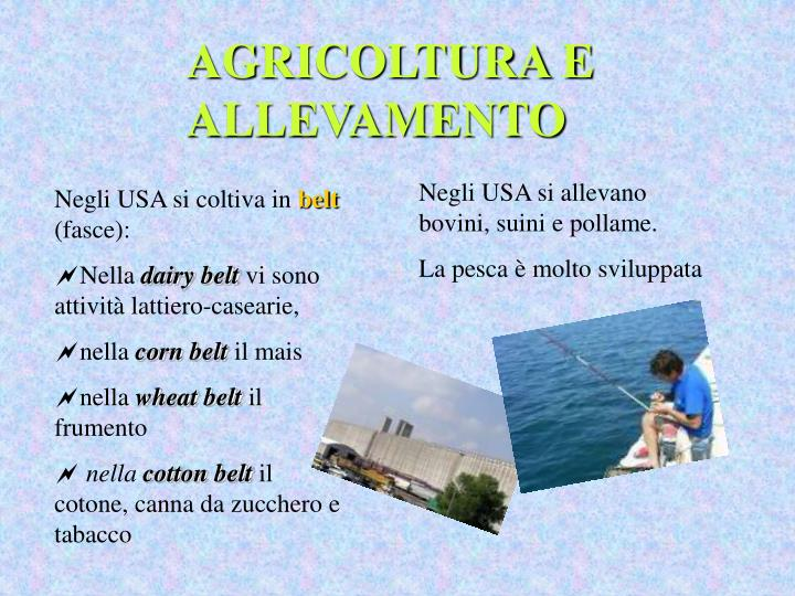 AGRICOLTURA E