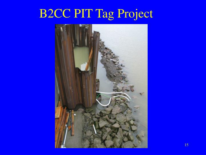 B2CC PIT Tag Project