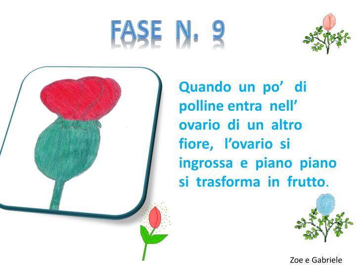 FASE  N.  9