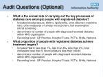 audit questions optional