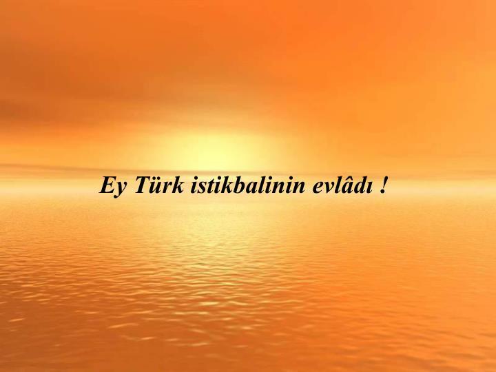 Ey Türk istikbalinin evlâdı !