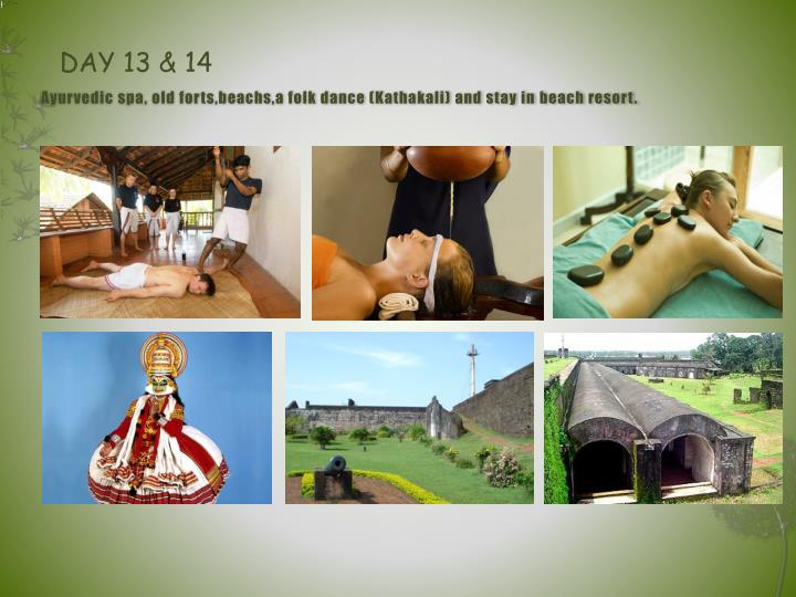 Ayurvedic spa, old forts,beachs,a folk dance (Kathakali) and stay in beach resort.