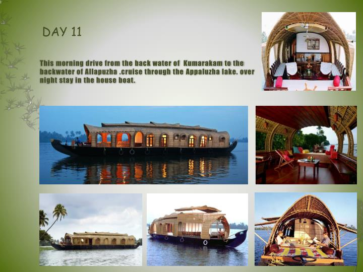 This morning drive from the back water of  Kumarakam to the backwater of Allapuzha .cruise through the