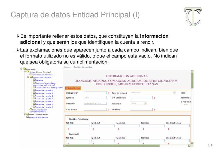 Captura de datos Entidad Principal (I)