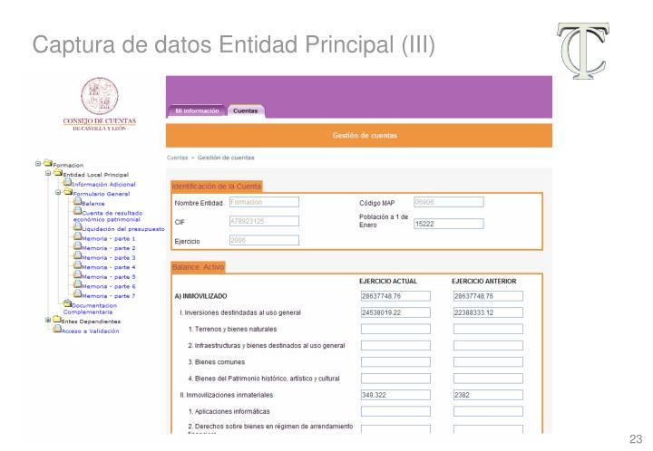 Captura de datos Entidad Principal (III)
