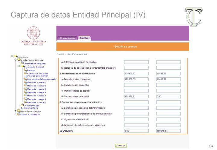 Captura de datos Entidad Principal (IV)