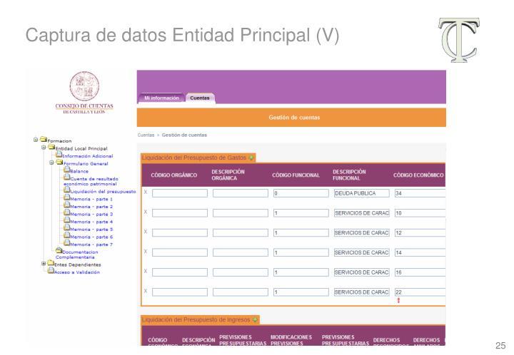 Captura de datos Entidad Principal (V)