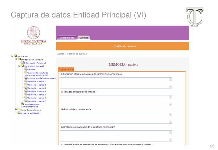 Captura de datos Entidad Principal (VI)