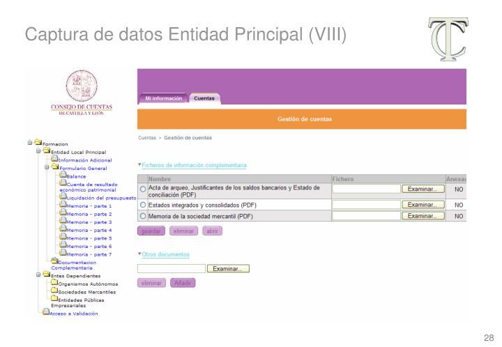 Captura de datos Entidad Principal (VIII)