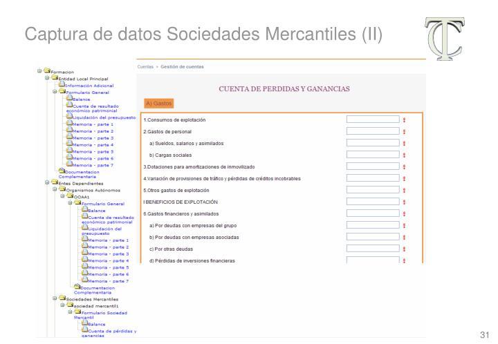 Captura de datos Sociedades Mercantiles (II)