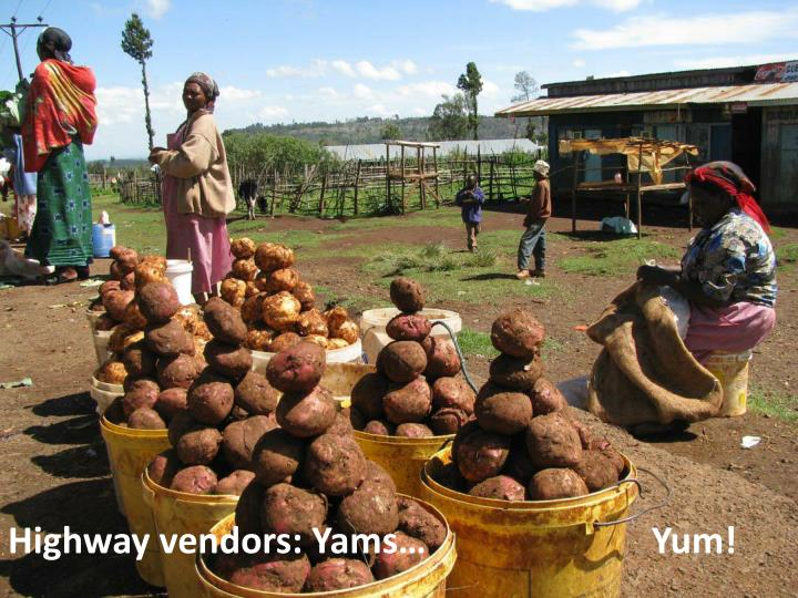 Highway vendors: Yams…                         Yum!