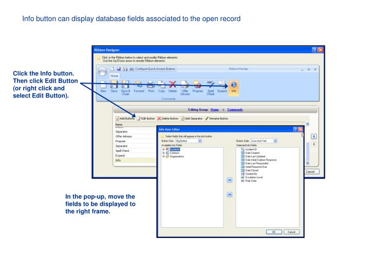 Info button can display database fields associated to the open record