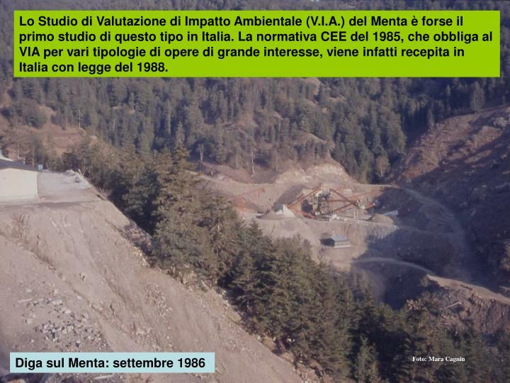Lo Studio di Valutazione di Impatto Ambientale (V.I.A.) del Menta è forse il primo studio di questo tipo in Italia. La normativa CEE del 1985, che obbliga al VIA per vari tipologie di opere di grande interesse, viene infatti recepita in Italia con legge del 1988.