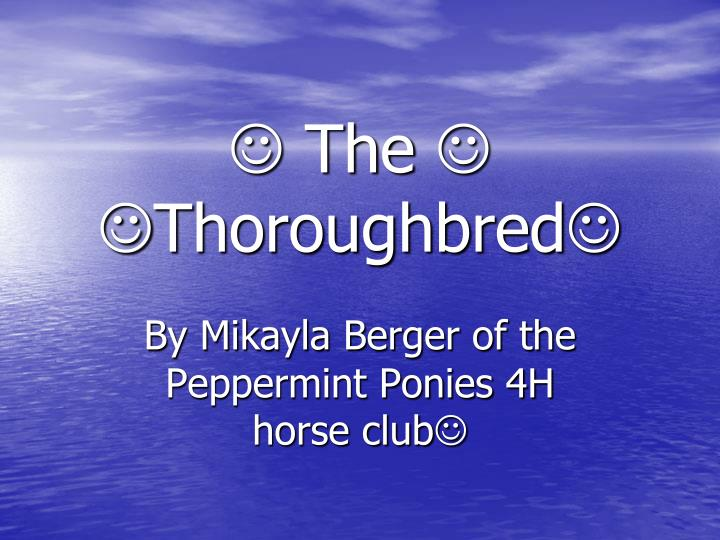 The thoroughbred