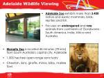 adelaide wildlife viewing