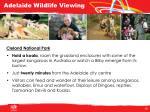 adelaide wildlife viewing1